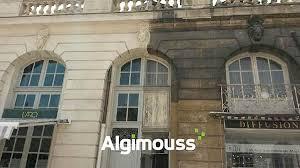 algimouss pour facade